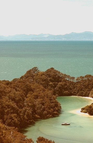 Lagoon in Abel Tasman National Park, New Zealand