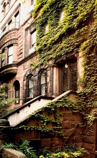 Ivy Entrance, Brooklyn, New York