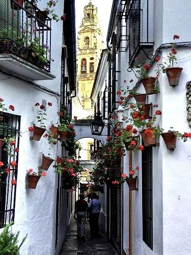 Narrow Street, Andalusia, Spain