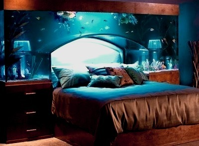 Aquarium Headboard, North Carolina