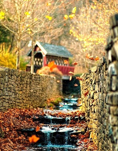 Autumn Waterfall, Loretto, Kentucky