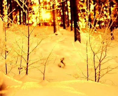 Snow Sunrise, Stockholm, Sweden