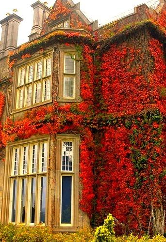 Muckross House in Killarney, Ireland