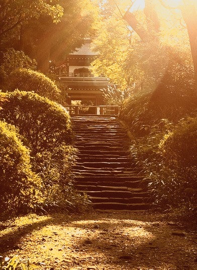 Stairs to the temple in Kamakura, Japan