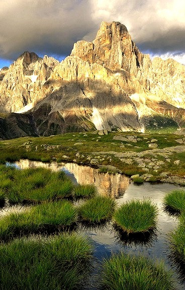 A mirror in the grass, Passo Rolle - Dolomites, Italy