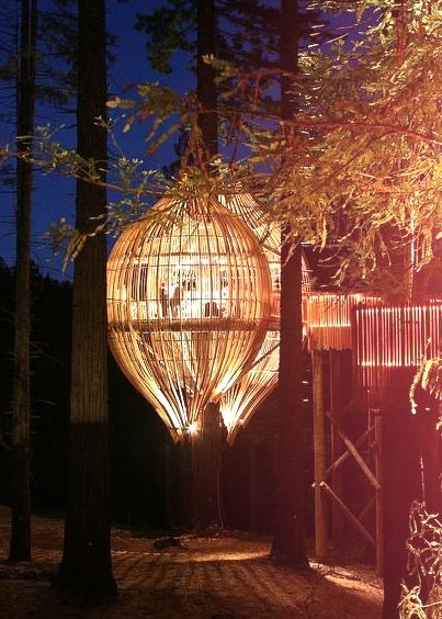 The Yellow Treehouse Restaurant at night near Auckland, New Zealand