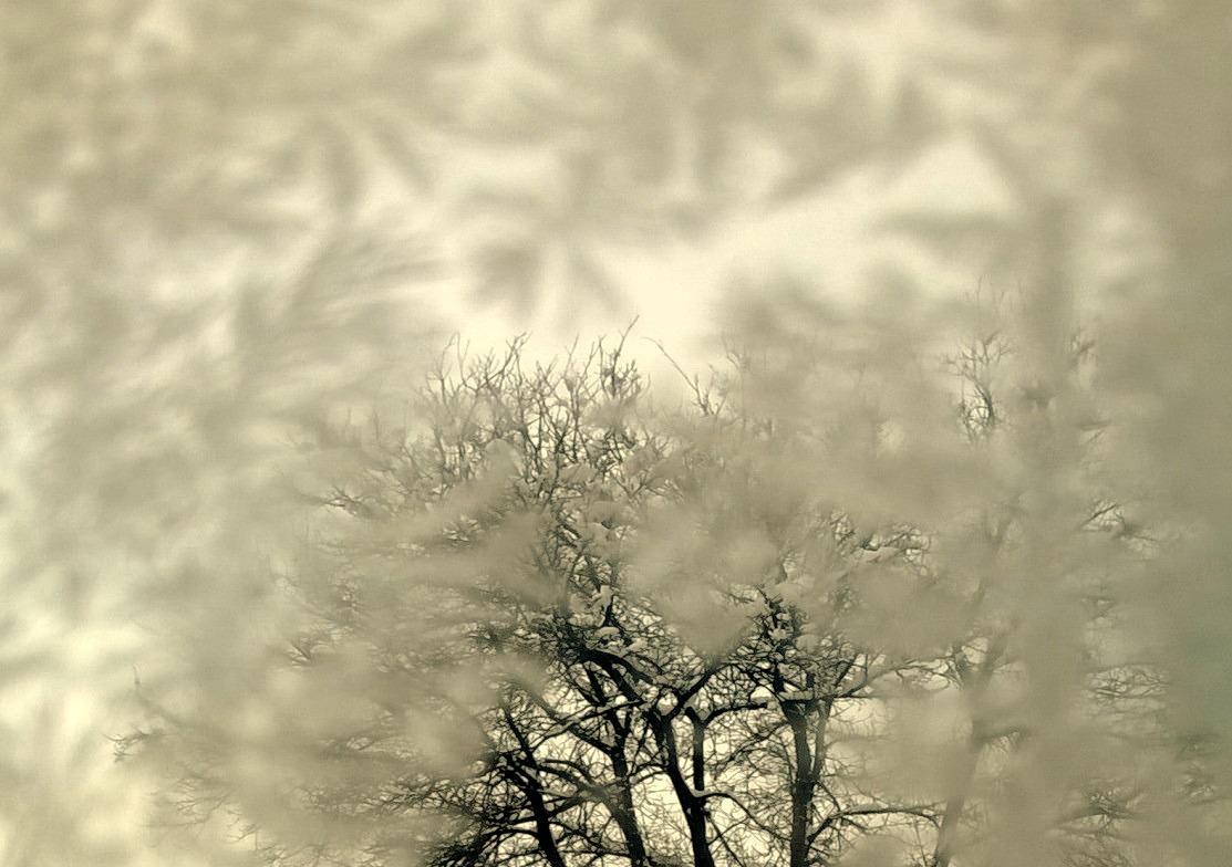 Through the frozen window.