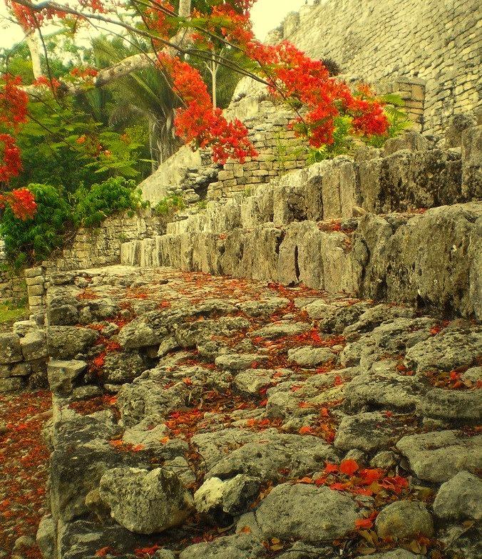 Kohunlich mayan ruins, Quintana Roo / Mexico