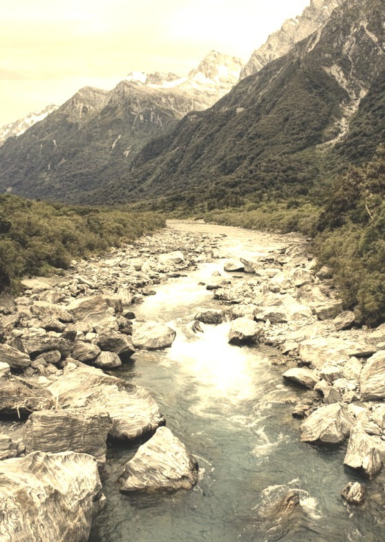 Copland River, Southern Alps / New Zealand